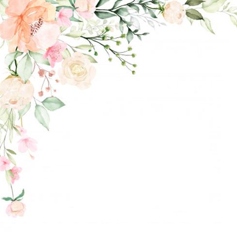 Wedding Decoration Services backdrop